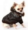 Club canin : Le Club Des Pattes D'Or