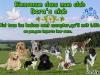 Club canin : Dora's club