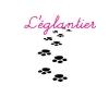 Club canin : L'églantier (For Tout Toutous)