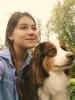 Club canin : Centre Animalier de Lys