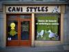 Club canin : cani styles