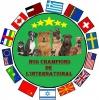 Club canin : Nos Champions De L'international