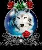 Club canin : Un hiver sans fin
