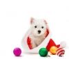 Lisa_22 - éleveur canin Dogzer