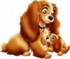 bebeluna60 - éleveur canin Dogzer