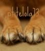 ptitelola73