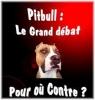 petiteange34 - éleveur canin Dogzer