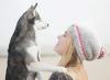 eme34 - éleveur canin Dogzer