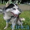 Huski27