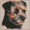 eclipce - éleveur canin Dogzer