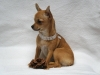 Azasloug - éleveur canin Dogzer