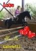 Lilie214 - éleveur canin Dogzer