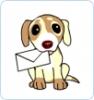 shannon-41 - éleveur canin Dogzer