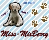 Miss-MixBerry