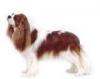 necromunia - éleveur canin Dogzer
