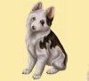 Samantha234 - éleveur canin Dogzer