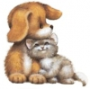 Yulura - éleveur canin Dogzer