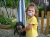happy-bulle - éleveur canin Dogzer