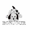 toutou-girl - éleveur canin Dogzer