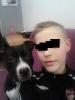 bogosse54 - éleveur canin Dogzer
