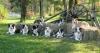 bordercollie88500 - éleveur canin Dogzer