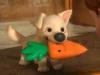 Animali60 - éleveur canin Dogzer