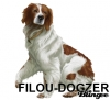 FILOU-DOGZER - éleveur canin Dogzer