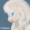 loankim - éleveur canin Dogzer