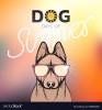 lolasuilhard - éleveur canin Dogzer
