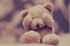 Emelina974 - éleveur canin Dogzer