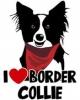 lalou59 - éleveur canin Dogzer