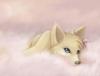 ClaraDu27 - éleveur canin Dogzer
