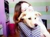 Australove2 - éleveur canin Dogzer