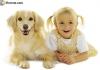 piton2 - éleveur canin Dogzer