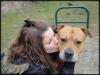 christel23 - éleveur canin Dogzer