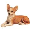 kevineb - éleveur canin Dogzer