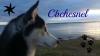 cbchesnel - éleveur canin Dogzer