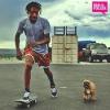moustike1 - éleveur canin Dogzer