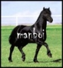 manboi - éleveur canin Dogzer