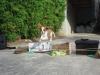 Fycell54 - éleveur canin Dogzer