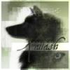 Faulk - éleveur canin Dogzer