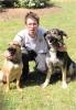 alex4969 - éleveur canin Dogzer
