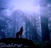 Shalow
