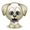 lorine1911 - éleveur canin Dogzer
