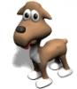 LoveDogsForever - éleveur canin Dogzer