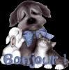 coco1918 - éleveur canin Dogzer