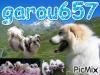 garou657