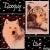 Dooguy-Live