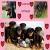 Nos_amis_pour_la_vie