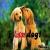 i love the DOG !!!!!!!